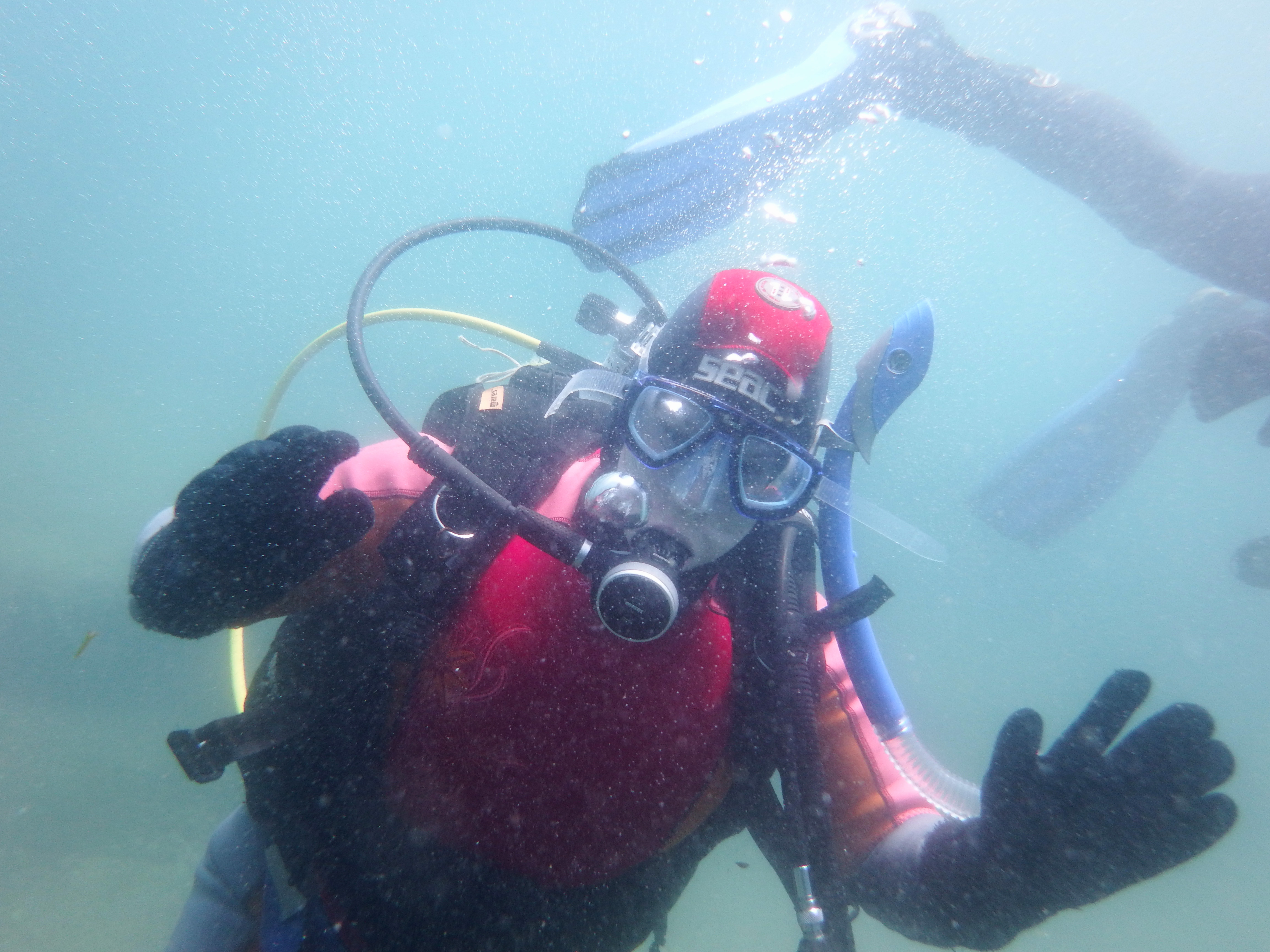 Amanda Scuba Diving